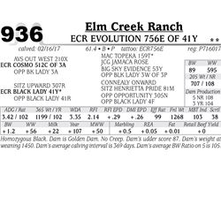 Lot - 936 - ECR EVOLUTION 756E OF 41Y