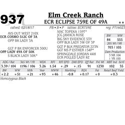 Lot - 937 - ECR ECLIPSE 759E OF 49A