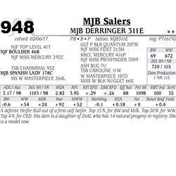 Lot - 948 - MJB DERRINGER 311E