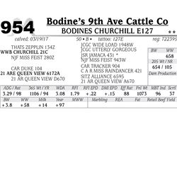Lot - 954 - BODINES CHURCHILL E127
