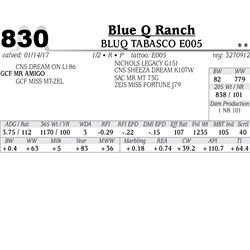 Lot - 830 - BLUQ TABASCO E005