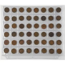48x NFLD 1 Cent Coins. Mixed Dates