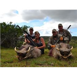 5-Day Plains game hunt in South Africa for 2 hunters
