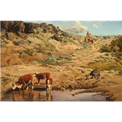 Bill Owen -Watering Hole