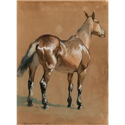 Frederic Remington -Study of Brown Horse