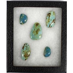 5 Nevada Turquoise Polished Cabochons