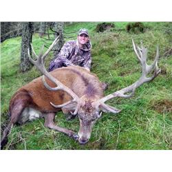 7-day Red Stag Hunt in Scotland for 1, includes Airfare