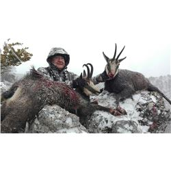 6-day Alpine Chamois Hunt in Slovenia for 1 hunter and 1 observer