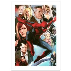 Amazing Spider-Man #645 by Stan Lee - Marvel Comics