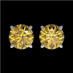 1.50 CTW Certified Intense Yellow SI Diamond Solitaire Stud Earrings 10K White Gold - REF-192M2H - 3