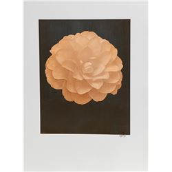Jonathan Singer, White Dahlia (Orange) on Black, Digital Photograph