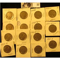 """(15) 1937 D Buffalo Nickels all carded in 1 1/2"""" holders. Some slightly better grades."""
