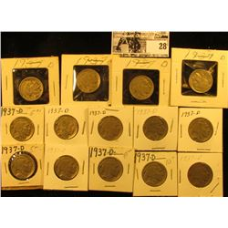 """(14) 1937 D Buffalo Nickels all carded in 1 1/2"""" & 2"""" holders. Some slightly better grades."""
