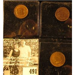1890, 1894, & 1897 Indian Head Cents. EF-AU, all with beautiful toning.