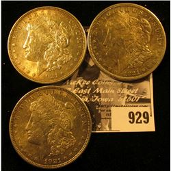 (3) 1921 P U.S. Morgan Silver Dollars, all EF.
