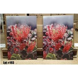 """Ohia in the Rain"" by William Weaver, Metal Print, $390 Retail, 16X24 each panel"