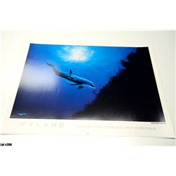 """""""Dolphin Vision"""" by Wyland, Paper, 36 x 24"""