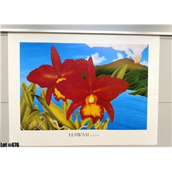 """""""Hawaii The Orchid Isle"""" by Powell, Paper, 33"""" x 25"""" (qty 5)"""