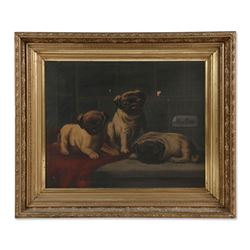 Pugs For Sale (19th Century), Canadian