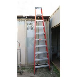 Tall Werner Work Ladder