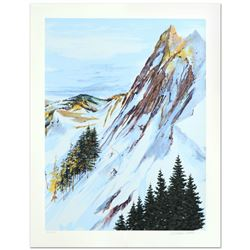 Rocky Mountain Slope by Nelson, William