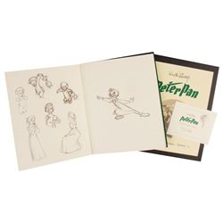The Sketch Book Series Peter Pan Collector's Edition.