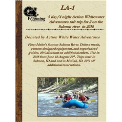 Action White Water Raft Trip on the Salmon river