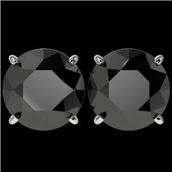 5 CTW Fancy Black VS Diamond Solitaire Stud Earrings 10K White Gold - REF-97Y2K - 33145
