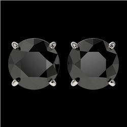 2.60 CTW Fancy Black VS Diamond Solitaire Stud Earrings 10K White Gold - REF-52X8T - 36683