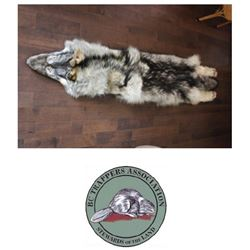 Tanned Wolf Hide. Generously donated by the BC - Valued at $1500.00