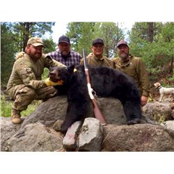 5 Day Bear Hunt in New Mexico for 1 hunter