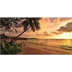 Exclusive Private Island 7 Nights of Beachfront  to 5 Star Resort Palm Island in the Caribbean