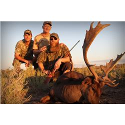 Fly Fishing and Hunting Adventures offers 4 days Big hunt for 3 Hunters in La Pampa Argentina
