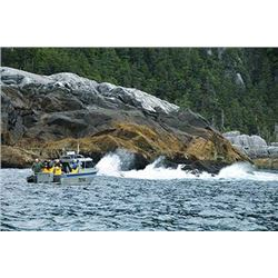 Enjoy a Fishing Vacation at Waterfall Resort In Alaska For 2 People With Floatplane Transportation