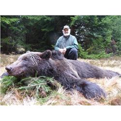 TA - 10 European Brown Bear Hunt with Hunt In Europe