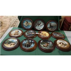 LOT OF 11 FRAMED WILDLIFE COLLECTOR PLATES