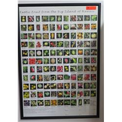 "Framed Big Island Fruit Poster, Approx. 27"" x 39.5"""