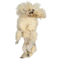 """Brad Pitt """"Louis"""" poodle prop from Interview with the Vampire: The Vampire Chronicles."""