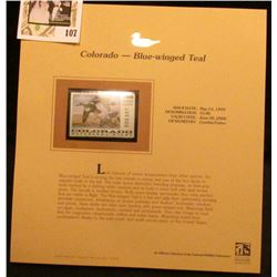 1999 Colorado-Blue-winged Teal Waterfowl $5.00 Stamp. Mint Condition with literature, unsigned.