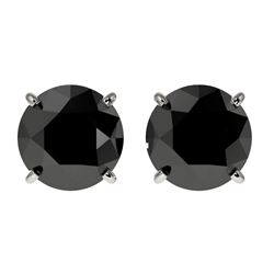 2 CTW Fancy Black VS Diamond Solitaire Stud Earrings 10K White Gold - REF-40H9A - 33083