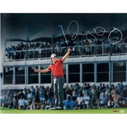 "Rory McIlroy Signed ""Magic Moment"" 16x20 Photo (UDA COA)"