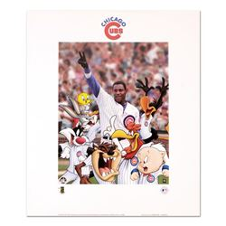 Looney Tunes Chicago Cubs by Looney Tunes
