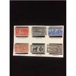CANADIAN STAMPS LOT (NEWFOUNDLAND) ONE & EIGHT CENTS
