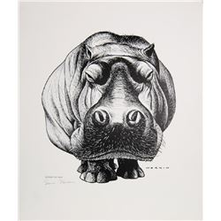 Sam Norkin, Dreamy the Hippo, Poster