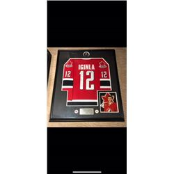 BEAUTIFULLY FRAMED AUTOGRAPHED JEROME IGINLA OLYMPICS JERSEY.  CERTIFICATE OF AUTHENTICATION.