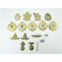 ASSORTED CAP/COLLAR BADGES