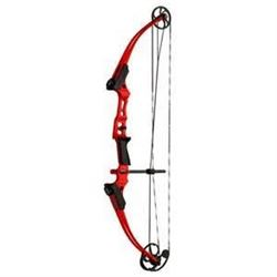 NASP - Target, Bow & Arrow Combo Package