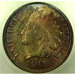 1901 Indian Cent
