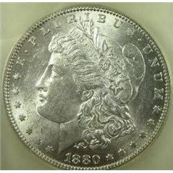 1880-O  micro o Morgan Silver Dollar  USCG MS