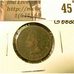 1869 U.S. Indian Head Cent, Ground recovery, net good.